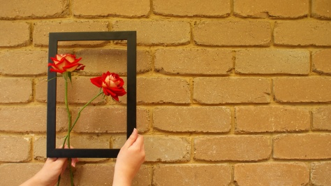 Bring Beauty in the Frame, by Child of Darknerss