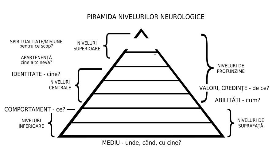 Piramida nivelurilor neurologice. Grafic de Răzvan Goldstein