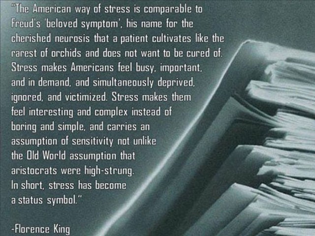 american stress quote