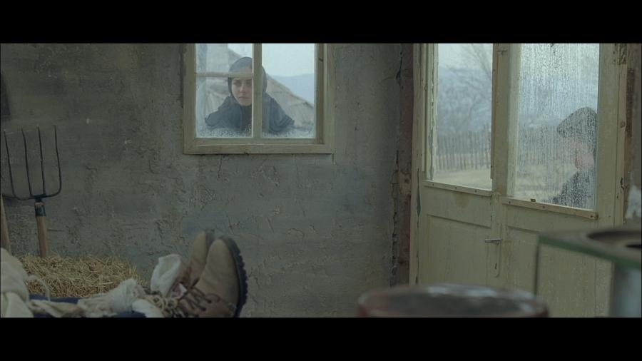 dupa-dealuri-4-mobra-films