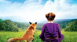 le renard 3