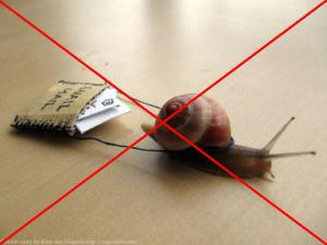 no snail mail