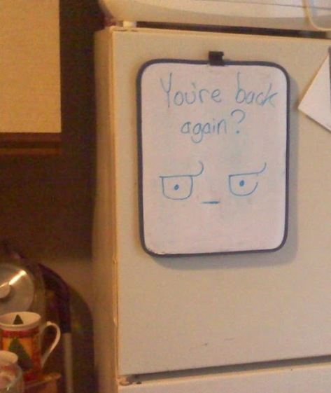 back at the fridge