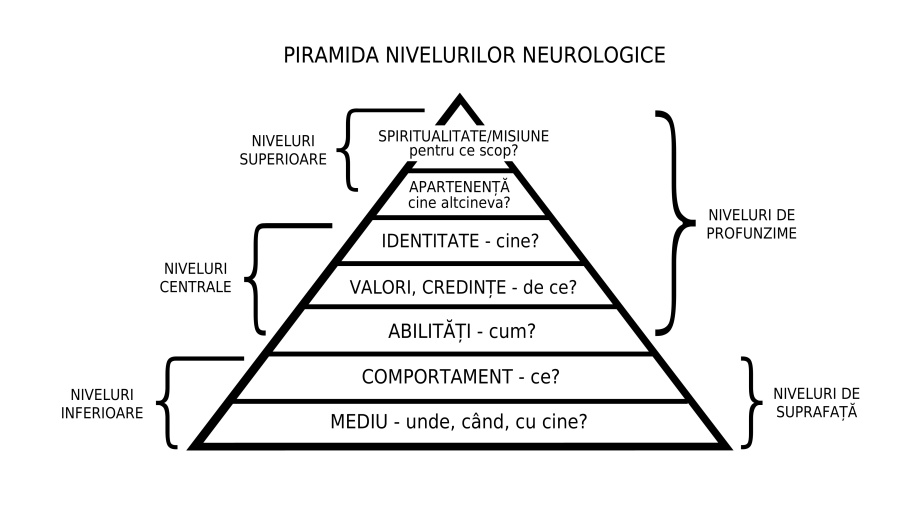 Piramida niveluri neurologice